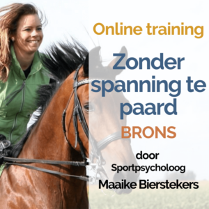 E-learning zonder spanning te paard – Brons