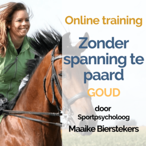 E-learning zonder spanning te paard – Goud